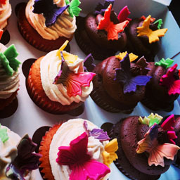 butterfly,cupcakes,summer,party,childrens,buffet,catere,chesterfield,derbyshire