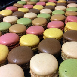 mini,macaroon,afternoon,tea,garnish,catering,chesterfield